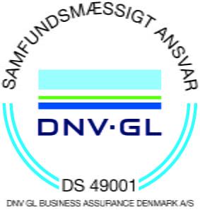 DS 49001